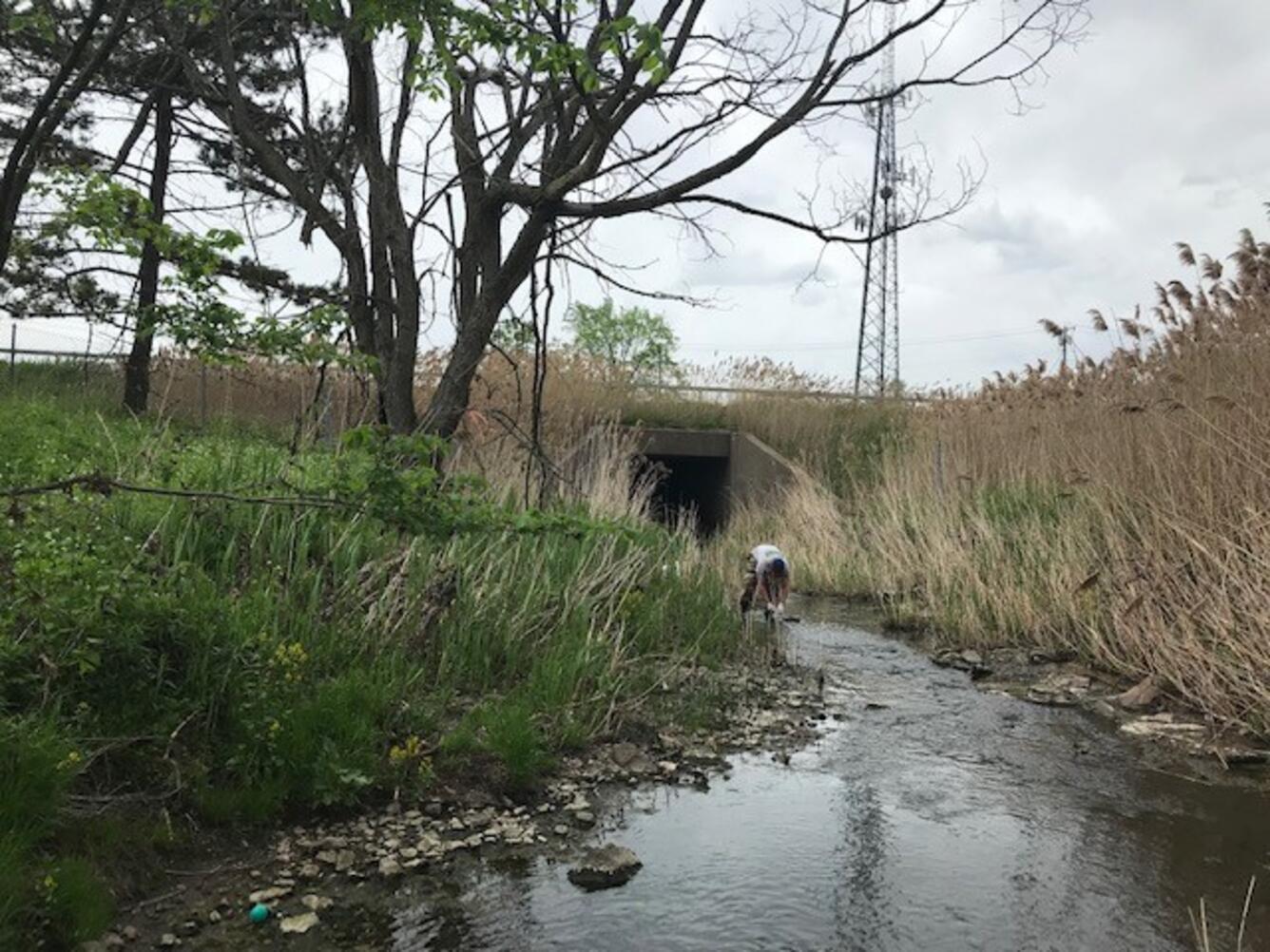 person leaning over in stream near bridge